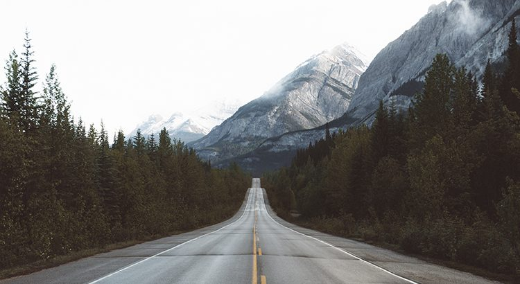 Road leading to the mountains with trees on either side