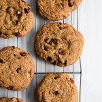 Gluten Free Sunbutter Chocolate Chip Cookies